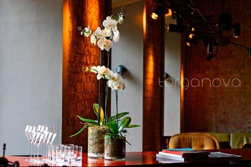 Орхидеи в винном баре